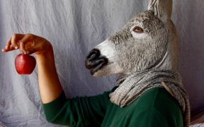 [Work in progress] Amine Oulmakki : Sommes-nous tous des ânes ?