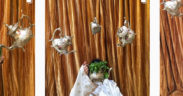 [Story] La photo marocaine en pleine envolée