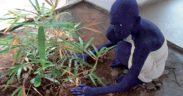 [Actu] À Ouagadougou, la biennale de la sculpture rempile