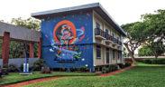 [Books] Street art : de la contestation à la normalisation ?